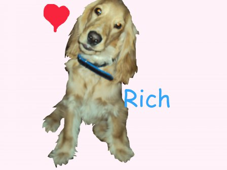 –ич:Rich